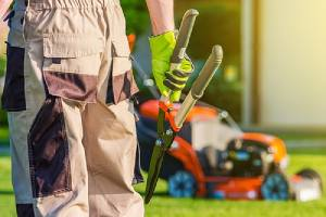 Landscaping professional with a gardening scissors. An image for landscaping trends 2020